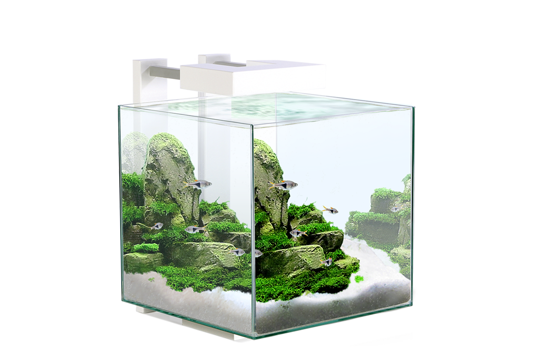 Ciano nexus pure 15 waterworld aquatics for Site aquarium